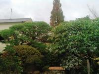 仕事納め❗ - 庭師ののんびり紀行
