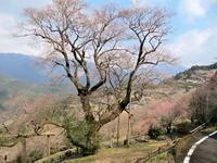 今年もあと少し - 皿倉山の見える家