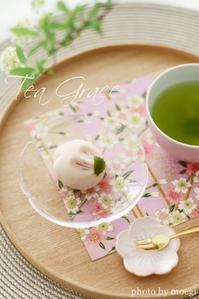 【募集】4/1(日)「手相鑑定会・2018春」のご案内 - 伊勢崎のお茶屋 *「茂木園」のブログ