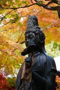 東福寺(とうふくじ)散歩写真 - 牛の散歩写真・関西版