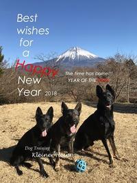 2018年、新年明けましておめでとうございます! - kleiner heine