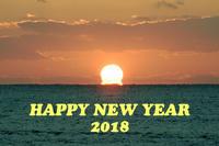 HAPPY NEW YEAR 2018 - オカメのきもち(・Θ・)♪