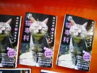 今年の夢を語る元旦 - ご機嫌元氣 猫の森公式ブログ