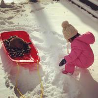 初雪遊び - しろうさくろうさ