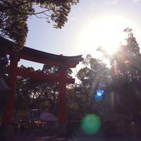 【初詣】朝の宇佐神宮から【今年は六郷満山開山1300年】 - Miemie  Art. ***ココロの景色***