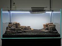 アクアリウム水草水槽ミスト式立ち上げ - 好事家な生活