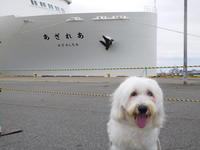 ゴン太の新日本海フェリー新造船あざれあ旅 - ゴン太の新日本海フェリーあざれあ旅