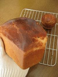 瀬戸内レモンブリオッシュ - slow life,bread life