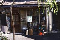 裏原宿奥原宿にて--2018正月 - くにちゃん3@撮影散歩