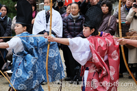 Set to shot a BOW ceremony held in the Ohyamato shrine. 大和神社の御弓始式 - 奈良と  大和写真家™「影向」 Nara and Japanism by高畑写真事務所