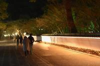 HAPPY NEW YEAR at EIKANDO (・O・)京都 永観堂禅林寺除夜の鐘 - marutake-ebisu 京都一景