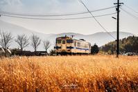 ☆ ローカル線 キハ140 単行 ☆ - Trimming