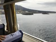 新年*伊豆大島旅 ①大自然 - おはけねこ 外国探訪
