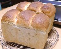 初焼き - ~あこパン日記~さあパンを焼きましょう