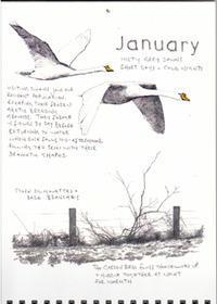 1月 -霧深い灰色の夜明け日は短く、寒い夜- - ブルーベルの森-ブログ-英国のハンドメイド陶器と雑貨の通販