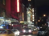 NY Day3 ✨ さよなら~NYの夜 - Orchid◇girL in Singapore Ⅱ