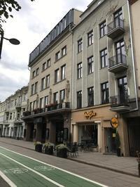リトアニア旅行記(7)自転車推奨の街カウナス - 本日の中・東欧