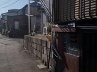 江ノ島 2018/01/06 - 鵠沼通信