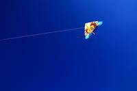 お正月の凧揚げ - 司法書士 行政書士の青空さんぽ