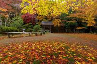 京都の紅葉2017 山寺・金蔵寺の秋模様 - 花景色-K.W.C. PhotoBlog