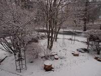 雪です - 標高1,100メートルの悦楽