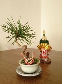 新年明けまして  おめでとうございます! - アーティスティックな陶器デザイナーになろう