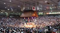 カヌーと相撲の共通点 - ファン歴46年 神宮の杜