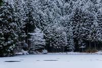 雪の龍王ヶ渕 - toshi の ならはまほろば