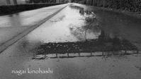 雨の日に - 長い木の橋