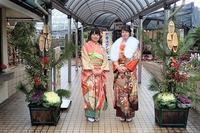 新成人とNHK取材@新春洋ラン展 - 手柄山温室植物園ブログ 『山の上から花だより』