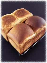 食パンとベーグル - 今日のことと、、