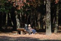 真冬の公園でのひと時 - 信仙のブログ