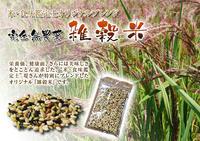無農薬の『雑穀米』『発芽玄米』大好評販売中!さらに無農薬栽培のお米で新商品準備中! - FLCパートナーズストア