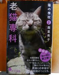 本日発売『猫の學校2 老猫専科』華ちゃん♪ - ご機嫌元氣 猫の森公式ブログ