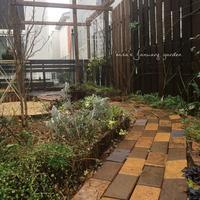 レンガの小道完成 - misaの庭暮らし~Abandon~