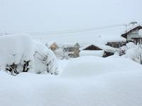 穏やかな冬から一転。突然の大雪に雪かき。そして・・・なんて日だ‼ - 大朝=水のふる里から