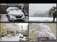 雪景色 - MATSUDAS