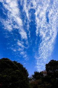 煙か雲か - memory