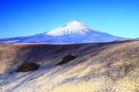 30年1月の富士(6)足柄峠の富士 - 富士への散歩道 ~撮影記~