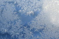 霜アートと上空400㎞から - 長女Yのつれづれ記
