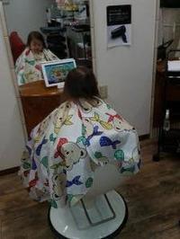 鍼灸・漢方「医学」に認定(松浦) - 柚の森の仲間たち
