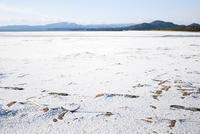 雪の砂浜 - 緑と青と茶