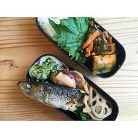 鰯梅肉焼きBENTO - Feeling Cuisine.com