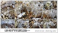 寒いと思えば霜柱と氷 - eekoの自己満足(1)