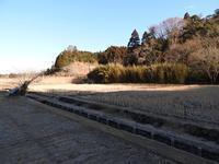 寒くても元気です - 千葉県いすみ環境と文化のさとセンター