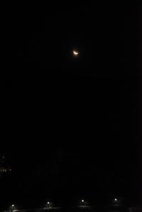 今朝の月 - (=^・^=)の部屋 写真館