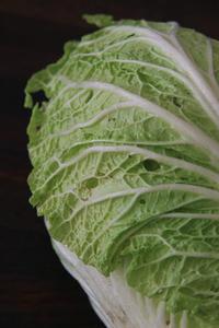 年明け初収穫の2野菜 - ぬるぅい畑生活