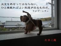 """【極上ハンバーガー】 - たまこ庵 """"独り言"""""""