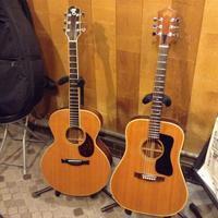 さいなら。。SantaCruz F 1996 - 線路マニアでアコースティックなギタリスト竹内いちろ@三重/四日市