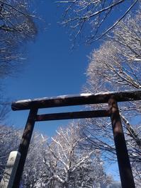 北海道神宮へ - おもいつくコトをかいてみる